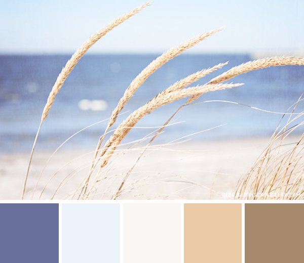 Color Palette At The Beach