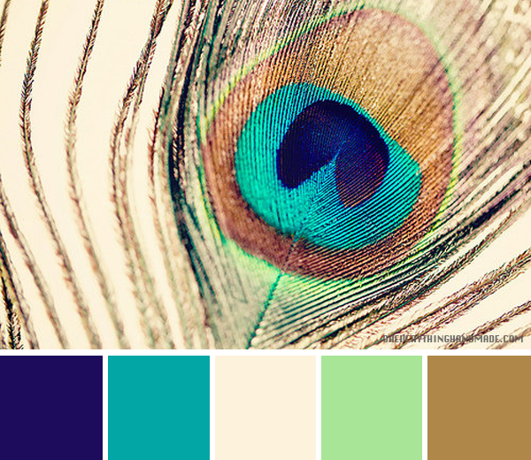 Color Palette Peacock Feather