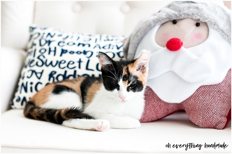 christmas-home-tour-2016-oh-everything-handmade-pet1