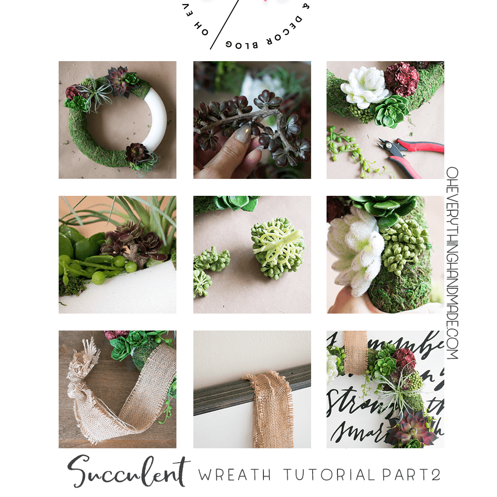 Succulent Wreath DIY - Step by Step part 2