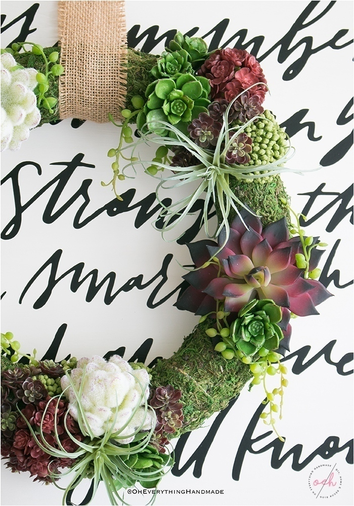Succulent Wreath DIY - Wreath on frame closeup